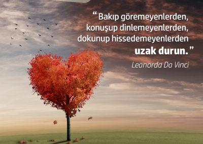 PA_Leonardo07