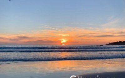 Kaliforniya Günlükleri 1